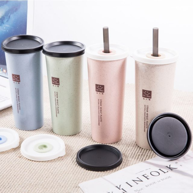 Portable Water Cup with Wheat Straws Double Lid Travel Drinking Bottle